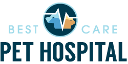 Best Care Pet Hospital